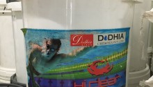 Chlorine Ấn độ
